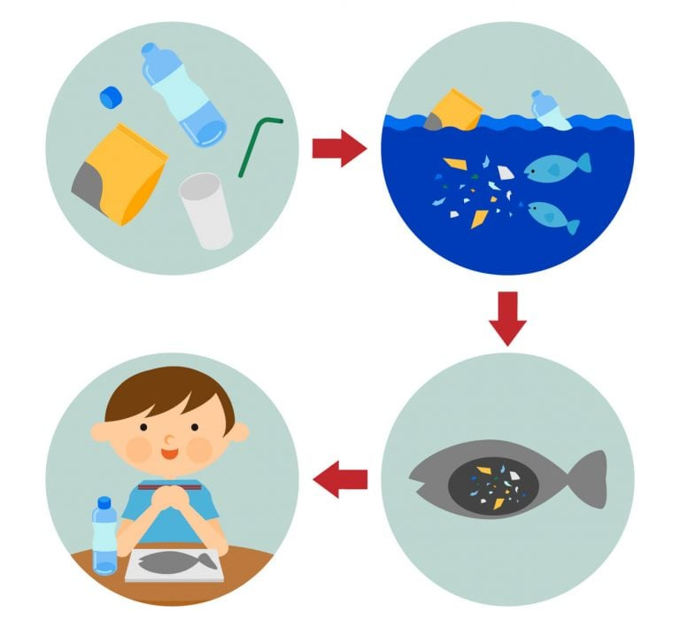 日本も原因?マイクロプラスチックが人体に悪影響?危険な理由は残留性 ...
