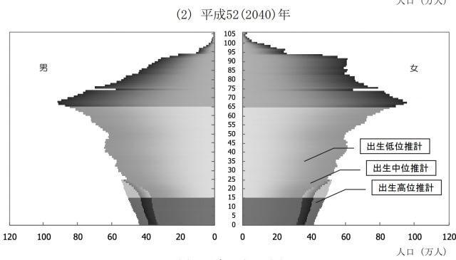 人口ピラミッド_2040年_予想
